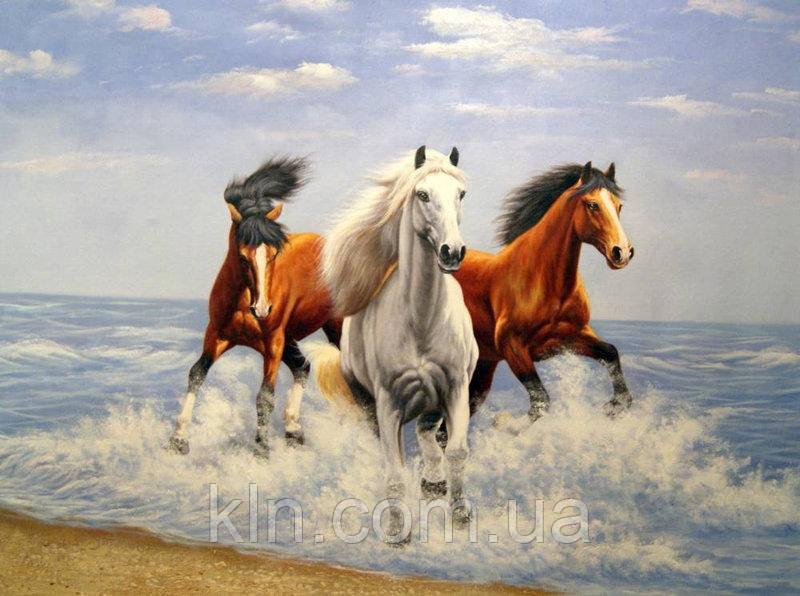 Купить Картина по номерам Лошади и свежий ветер 40 х 50 см ...