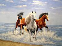 Картина по номерам Лошади и свежий ветер 40 х 50 см Идейка арт. КН2430