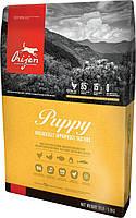 Orijen Puppy (Ориджен) сухой корм для щенков мелких и средних пород 13.0 кг