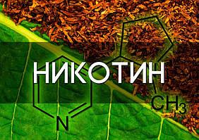 Никотин для жидкости 100 мг/мл Xian Taima Biological оптом и в розницу