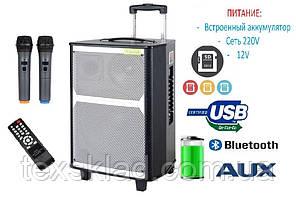 Акустика портативная EX-1202 с двумя микрофонами 150W (FM/USB/Bluetooth)