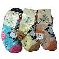 Носки детские для мальчиков и девочек Роза хлопок 1-2 года Оптом 3588