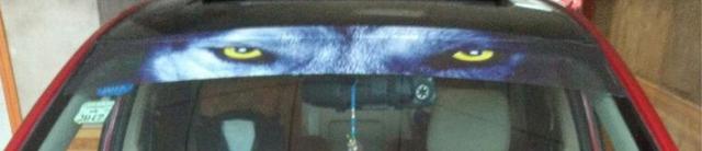 Наклейки на лобовое стекло автомобиля