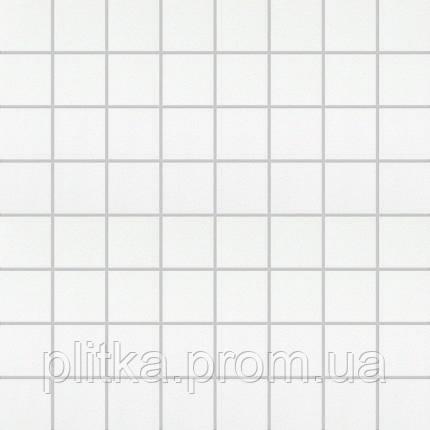 Плитка AXEL MOSAICO BIANCO SATIN. SU RETE AXELM1R1 МОЗАИКА 321х321, фото 2