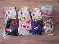 Носки мальчик Виатекс зима 12 махровые (в ассортименте) опт