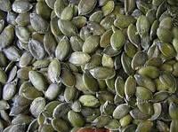 Семена тыквы голосемянной