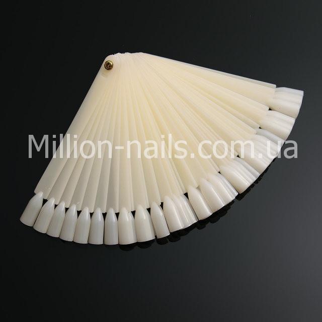 Палитра - веер матовая на 50 штук