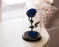 Роза в стеклянной колбе Синий сапфир
