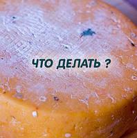Защитное покрытие для сыра спрей Антиплесень GLYPROCAL-100