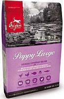 Orijen Puppy Large 11,4кг-корм для щенков крупных пород