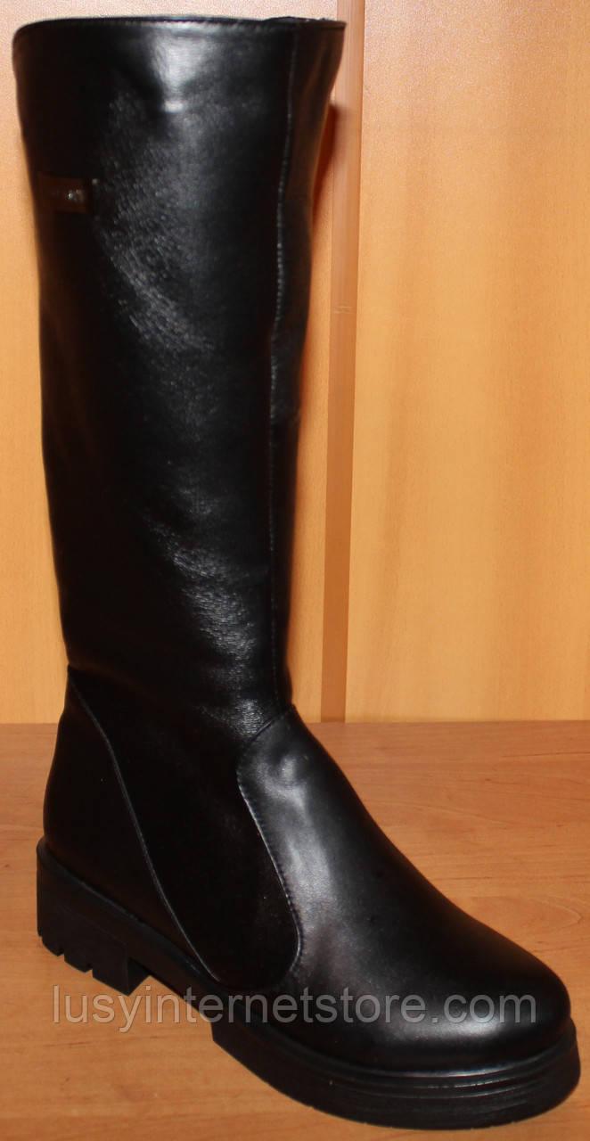 d261719d4 Сапоги женские зимние на маленьком каблучке, зимняя женская обувь от  производителя модель НС4, ...