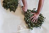Березовые Веники  для бани и сауны опт, фото 6