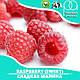 Ароматизатор TPA/TFA Raspberry (Sweet) Flavor (Сладкая малина) 100 мл, фото 2
