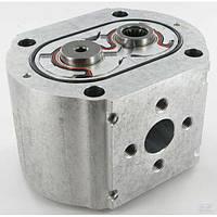 PLP3038DII Tandem Pump PLP30.38-D0-65-M6-LED/EB-N-I-FS