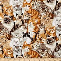 """Ткань для пэчворка и рукоделия американский хлопок """"Котята"""" - 45*55 см"""