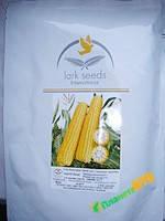 Кукуруза Раннее Наслаждение F1, 2500 семян , Lark Seeds (Ларк сидс), США