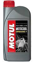 Антифриз Motul Motocool Factory Line -35°C 1л