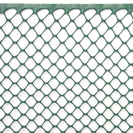 Сетка для растений, 1x5 м, рулон, цвет-зеленый, 15 мм, шестиугольные отверстия, фото 2