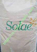Протеин изолят соевого белка Solae Supro Оригинал (США) 90 % белка