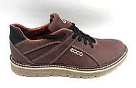 Туфли мужские ECCO натуральный нубук коричневые E0034