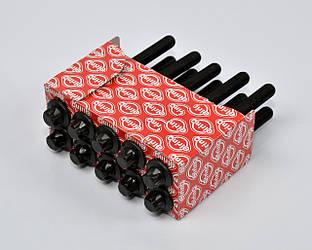Болты головки блока цилиндров на Renault Kangoo 2001->2008 1.5dCi - Elring (Германия) - EL373281