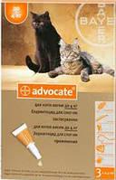 Капли на холку Адвокат для котов до 4 кг