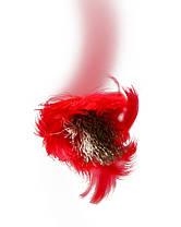 Шнур полипропиленовый плетеный, Украина D 10 мм, 20 м, фото 2
