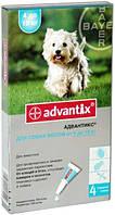 Капли на холку Адвантикс для собак от 4 до 10 кг