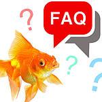 Часто задаваемые вопросы по уходу за аквариумом, содержанию и кормлению аквариумных рыб