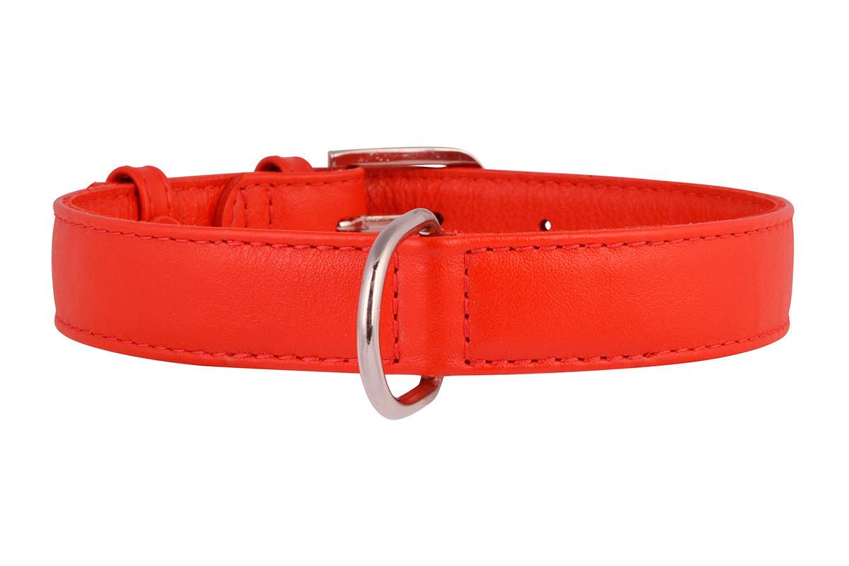 Ошейник кожа 38-49 см 25 мм Гламур Collar для собак