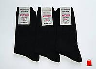 Мужские носки Нік, набор 10 шт., арт MS1015