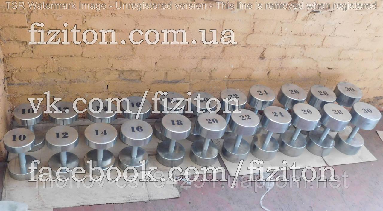 Оцинкованный профессиональный гантельный ряд 12 - 30 кг, шаг 2 кг, 420 кг
