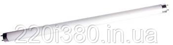 Лампа люминисцентная e.fl.t8.g13.30.64 G13 T8 30Вт, 6400K
