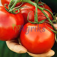 Семена томата детерминантного Скиф F1 Nunhems от 10 шт