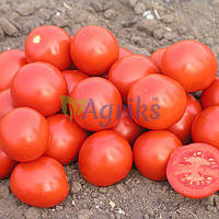 Семена томата детерминантного Дональд F1 Nunhems от 100 шт