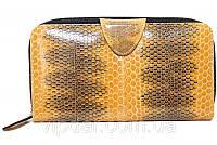 Женский кошелек из кожи морской змеи золотистый
