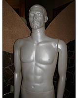 Манекен мужской перламутр, фото 1