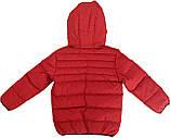 Демисезонная куртка для мальчика NANO F17 M 1251Salsa Red. Размер 152/158., фото 2
