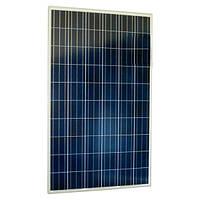 Поликристалическая солнечная панель(батарея)  Suntech STP260-20/Wem 260Вт, 24В