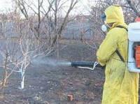 Опрыскивание растений, обработка пестицидами от вредителей и болезней