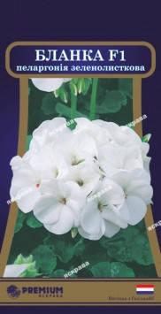 Насіння Квіти Пеларгонія зеленолисткова Бланка Ф1 біла 5нас ТМ Яскрава, фото 2