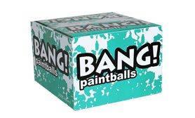 Пейнтбольные шары BANG зима-осень