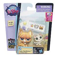 Игровой набор Hasbro littlest pet shop lps игрушка-зверюшка с питомцем sulky macwhiskers & chenille chilla