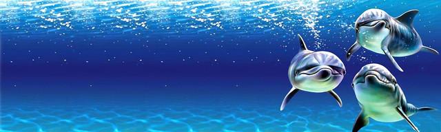 стеклянный-фартук-дельфины