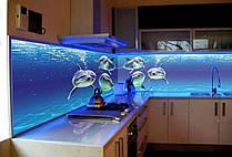 Стеклянный кухонный фартук с изображением дельфинов