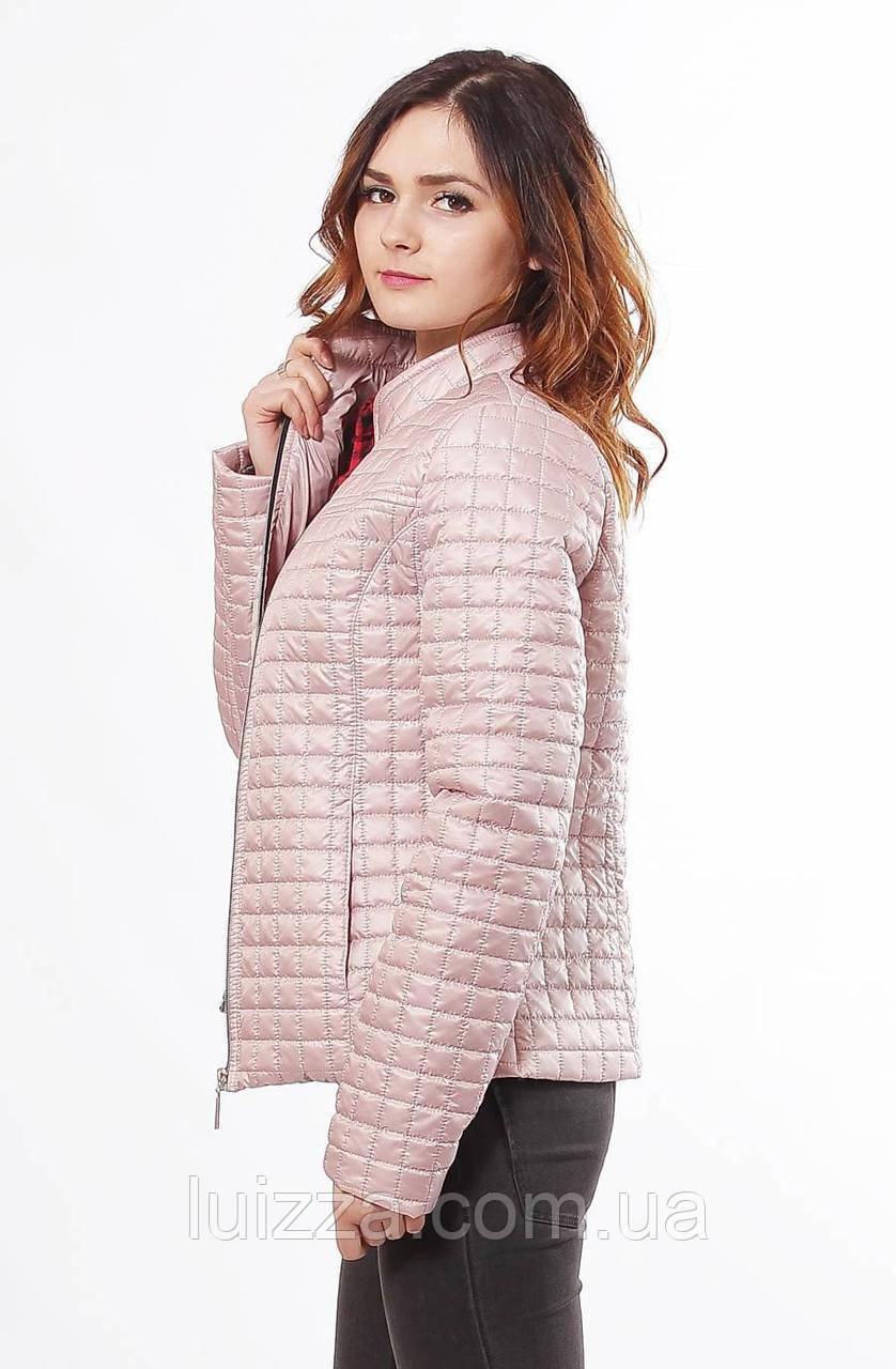 bba619e1d2d83ff Куртка женская стеганная большие размеры 44-68р, цена 890 грн., купить в  Харькове — Prom.ua (ID#582142392)
