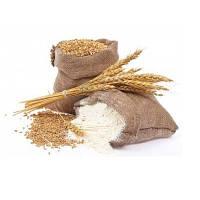 Мука пшеничная в/с (высший сорт) по Украине и на экспорт (FCA/DAF/FOB/CFR/CIF)