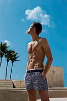 Шорты пляжные David Man D8 6951 46(S) Как Фото David Man D8 6951
