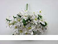 """Мелкоцвет """"Незабудка"""" (белый)"""
