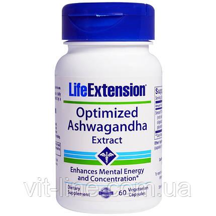 Life Extension, Оптимизированный экстракт ашвагандха, 60 капсул, фото 2